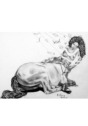 Odara Metamorphosis Drawing