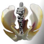 Sculpture Orchid